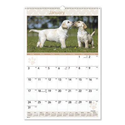 View larger image of Puppies Monthly Wall Calendar, 15.5 x 22.75, 2021